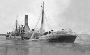 Laura Maersk 1920